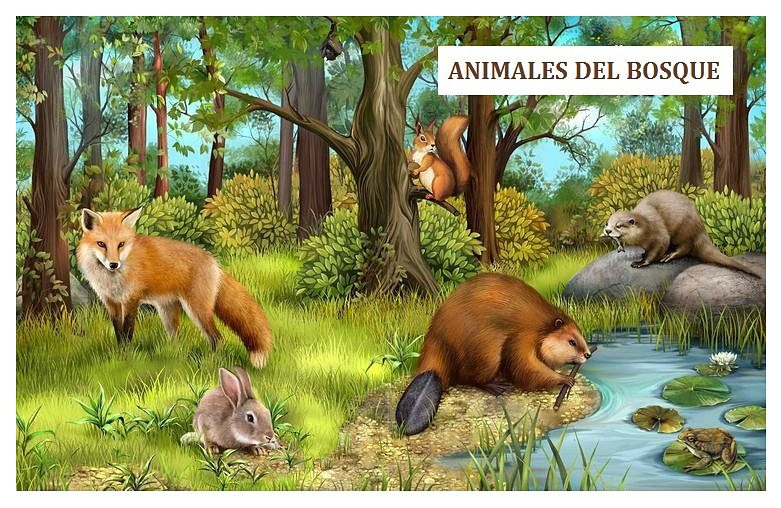 Dibujos de animales salvajes para imprimir, masquelibros