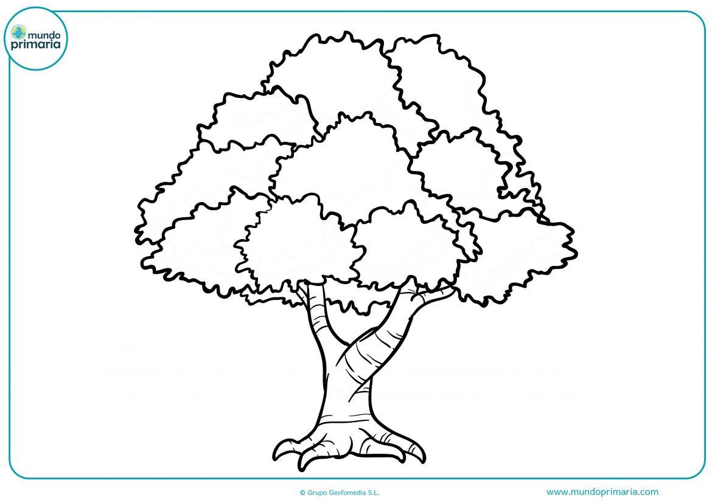 Dibujos de arboles para imprimir, masquelibros