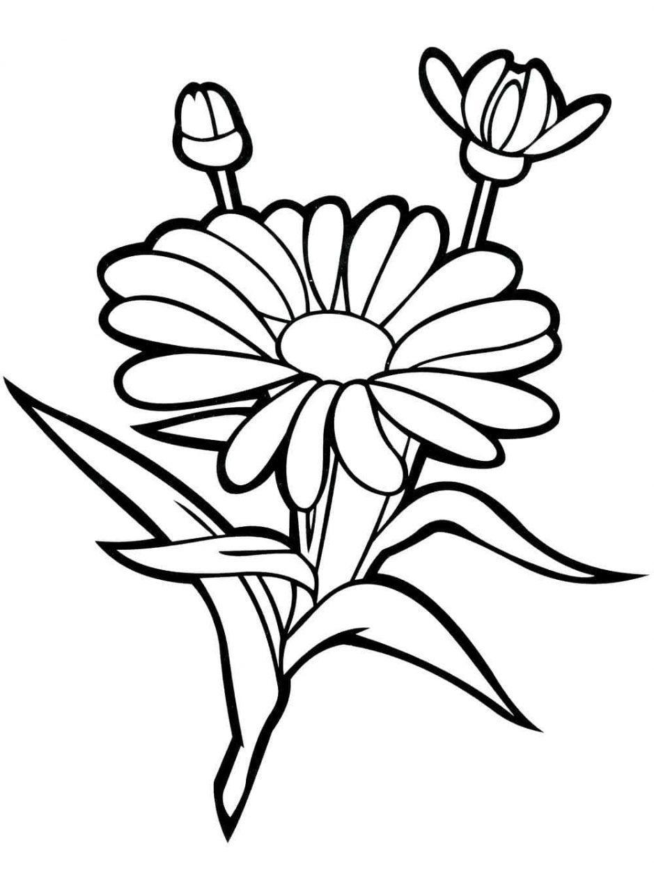 Dibujos de flores para imprimir a color, masquelibros