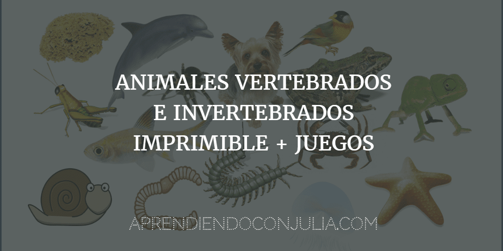 Fichas animales vertebrados e invertebrados para imprimir, masquelibros