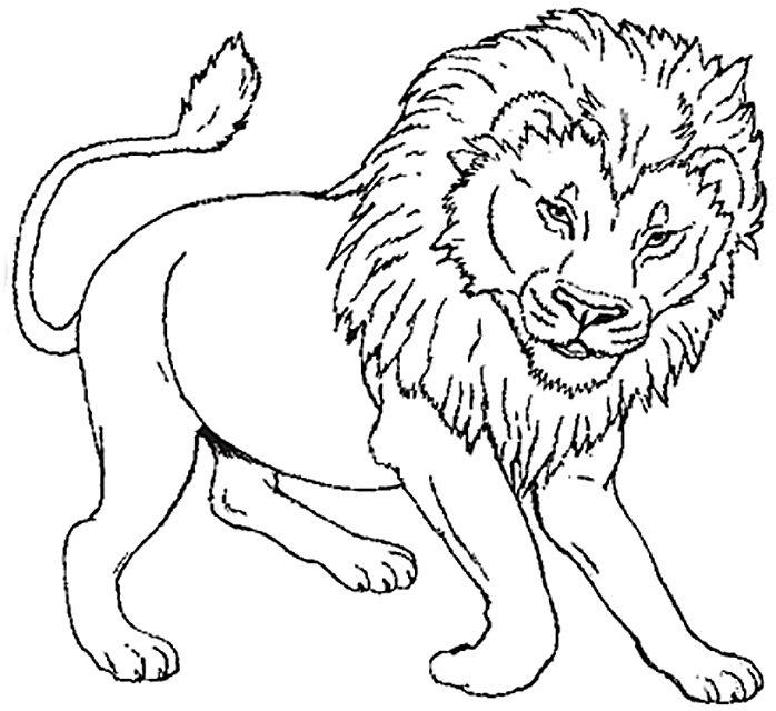 Fotos de leones para imprimir, masquelibros