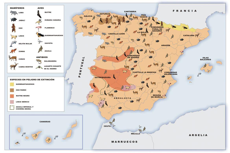 Mapa politico mudo de españa para imprimir en a4, masquelibros